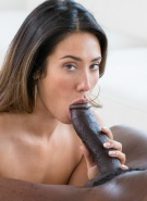 Blacked Pics Eva Lovia Catching Up #9